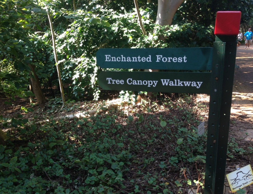 enchanted forest and canopy signs