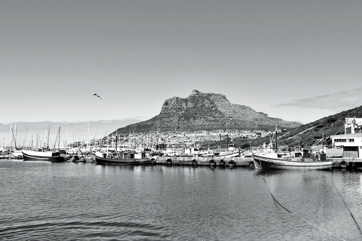 Hout Bay Harbour photograph taken with a Canon 100D in black and white